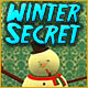 Winter Secret Game
