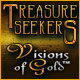 Play Treasure Seekers: Visions of Gold game